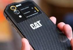 Кому подойдут смартфоны Caterpillar